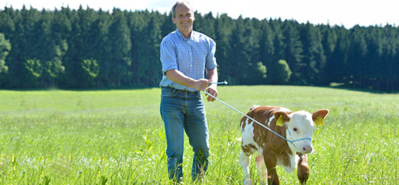 landwirtschaft-steuerberatung