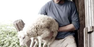 Viehzüchter und Erfolgsgastronom - ECOVIS Agrar - Steuerberater, Rechtsanwälte, Unternehmensberater