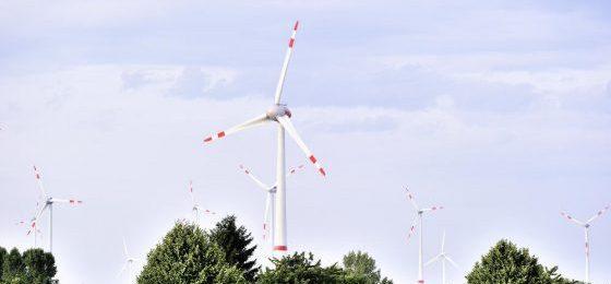 Windkraftklausel in BVVG-Kaufverträgen ist unwirksam