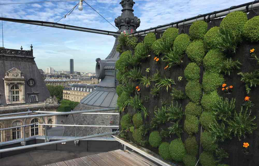 Die Landwirtschaft zieht in Paris auf die Dächer