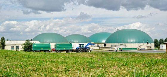 Rücknahme von Biogas-Gärresten: Welche Regeln gelten bei der Umsatzsteuer?