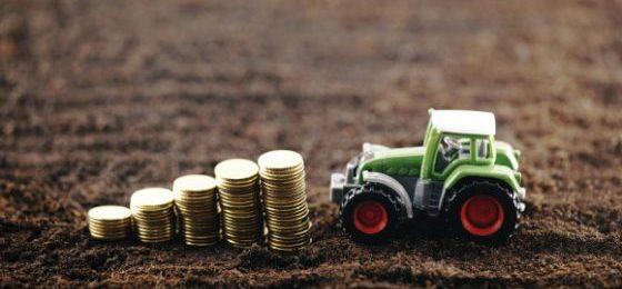 Landpachtverträge Details
