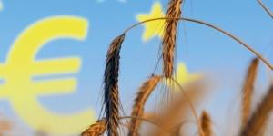Cross Compliance: So können Sie sich gegen Sanktionen wehren - ECOVIS Agrar - Steuerberater, Rechtsanwälte, Unternehmensberater