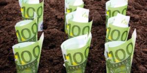 Verringern Grabpflegekosten die Erbschaftsteuer? - ECOVIS Agrar - Steuerberater, Rechtsanwälte, Unternehmensberater