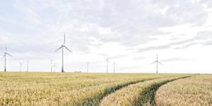 So profitieren Sie von Steuervorteilen für energetische Maßnahmen am eigenen Wohnhaus - ECOVIS Agrar - Steuerberater, Wirtschaftsprüfer, Rechtsanwälte