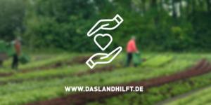 Neue Erntehelfer-Plattform daslandhilft.de gestartet - ECOVIS Agrar - Steuerberater, Rechtsanwälte, Unternehmensberater
