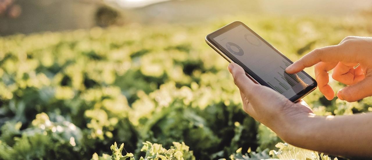 Digitalisierung in der Landwirtschaft: Chancen nutzen und gewinnen