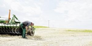 Gewinnermittlung: Wann Landwirte wegen eines Wechsels einen Übergangsgewinn versteuern müssen - ECOVIS Agrar - Steuerberater, Rechtsanwälte, Unternehmensberater