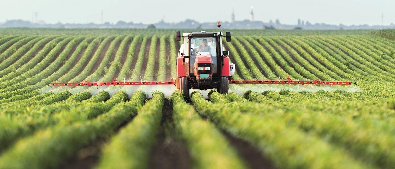Rechtsformwahl in der Landwirtschaft: Welche ist die richtige?