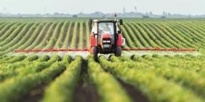 Rechtsformwahl in der Landwirtschaft: Welche ist die richtige? - ECOVIS Agrar - Steuerberater, Rechtsanwälte, Unternehmensberater