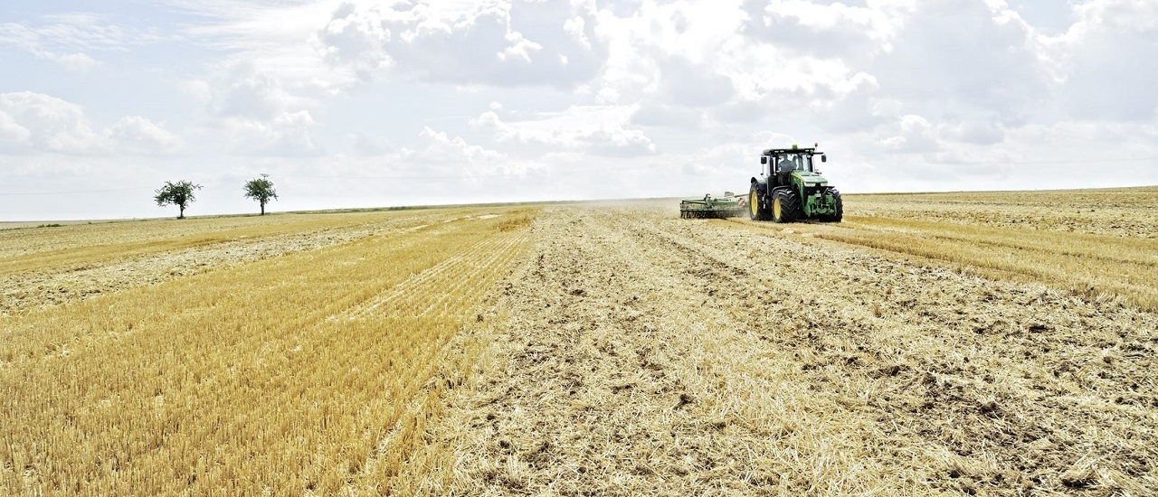 Umsatzsteuerpauschalierung in der Landwirtschaft: Lohnt sich der Wechsel zur Regelbesteuerung?