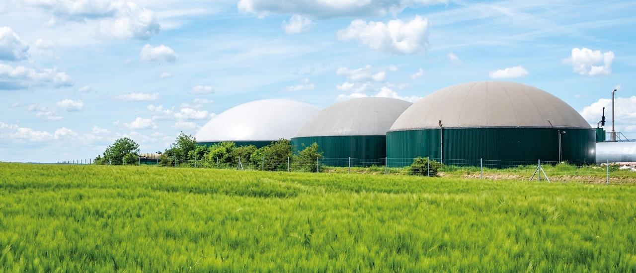 Wärme aus Biogasanlagen: Steuern auf Strom und Wärme