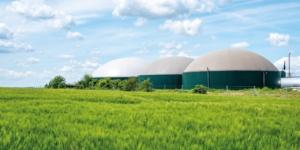 Wärme aus Biogasanlagen: Steuern auf Strom und Wärme - ECOVIS Agrar - Steuerberater, Rechtsanwälte, Unternehmensberater