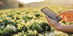 Social Media in der Landwirtschaft: So nutzen Sie die Kanäle richtig - ECOVIS Agrar - Steuerberater, Rechtsanwälte, Unternehmensberater
