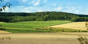 Übergabe verpachteter Betriebe: Endlich alles gut für die Erben? - ECOVIS Agrar - Steuerberater, Rechtsanwälte, Unternehmensberater