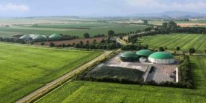 Kostenlose Wärmeabgabe aus einer Biogasanlage: Was gilt für die Vorsteuer? - ECOVIS Agrar - Steuerberater, Rechtsanwälte, Unternehmensberater