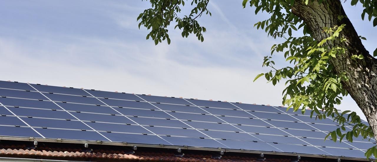 Photovoltaikanlagen: Lohnt sich der Wechsel zur Kleinunternehmerregelung?
