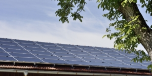 Photovoltaikanlagen: Lohnt sich der Wechsel zur Kleinunternehmerregelung? - ECOVIS Agrar - Steuerberater, Rechtsanwälte, Unternehmensberater