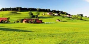 Betriebsteilung: Steuervorteile bei der Aufteilung des Hofs nutzen - ECOVIS Agrar - Steuerberater, Rechtsanwälte, Unternehmensberater