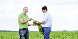Corona-Bonus: Auch für Mitarbeiter in der Landwirtschaft bis 31.03.2022 - ECOVIS Agrar - Steuerberater, Rechtsanwälte, Unternehmensberater