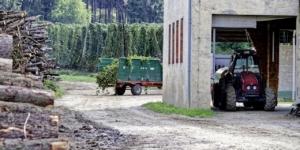 Einspruch bereits gegen den Grundlagenbescheid – auch bei Kalamitätsholz - ECOVIS Agrar - Steuerberater, Rechtsanwälte, Unternehmensberater