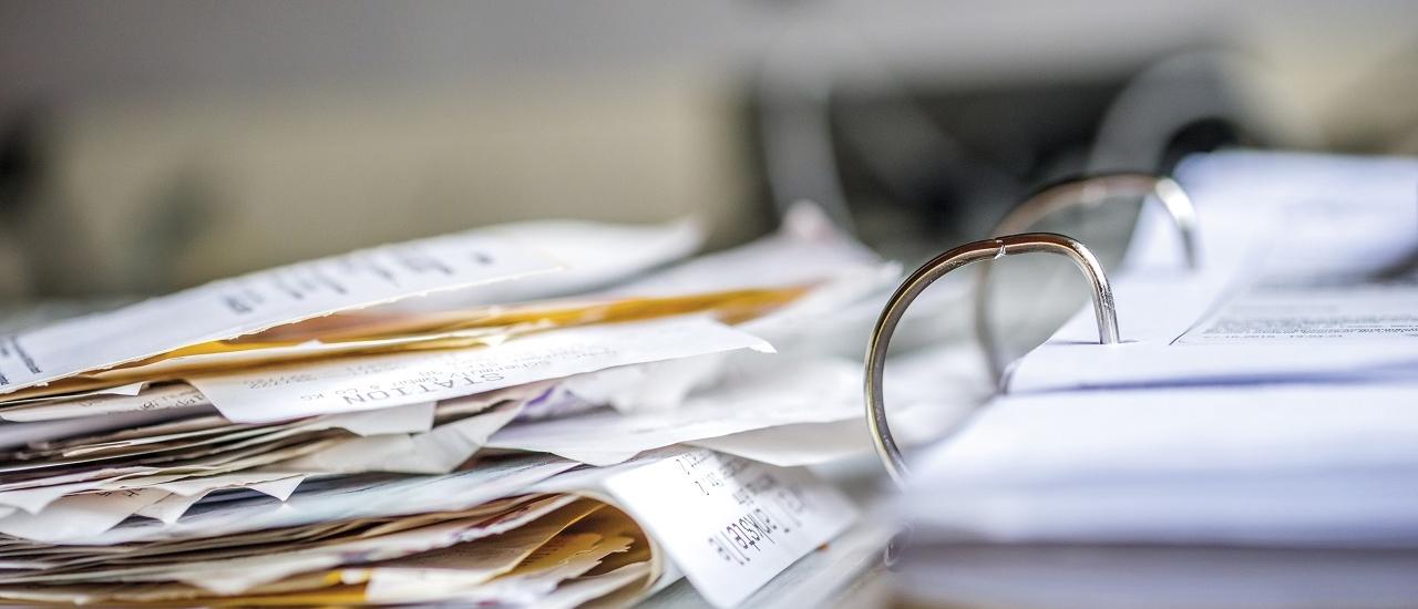 Ist die Kräuterpädagogen-Ausbildung umsatzsteuerpflichtig?