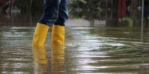 Hochwasserschäden in Bayern: Steuererleichterungen für Land- und Forstwirte - ECOVIS Agrar - Steuerberater, Rechtsanwälte, Unternehmensberater