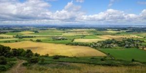 Jagd: Welche Umsatzsteuer gilt dafür? - ECOVIS Agrar - Steuerberater, Rechtsanwälte, Unternehmensberater