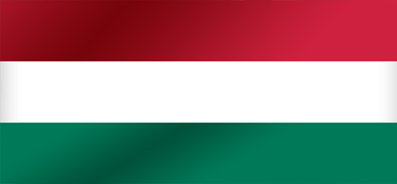 auditor, accountants, lawyer in Hungary