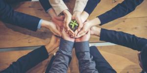 Nachhaltiges Wirtschaften gewinnt an Bedeutung für die Unternehmensbewertung - Ecovis Düsseldorf, Köln und Langenfeld