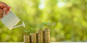 Green Bonds als nachhaltige Investitionen: Wann gelten Investments als grün? - Ecovis Düsseldorf, Köln und Langenfeld