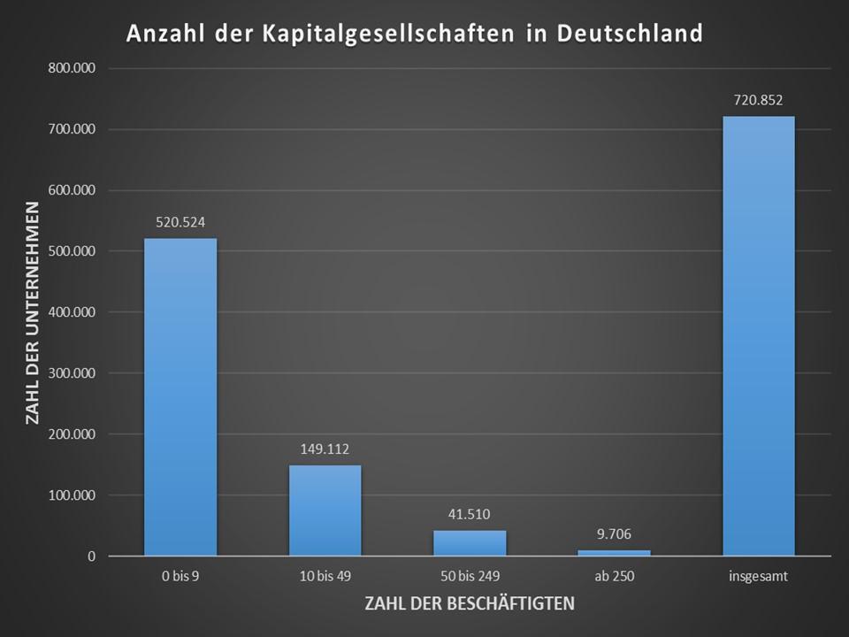 Anzahl Kapitalgesellschaften