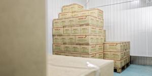 Update zu Novemberhilfe, Ü-Hilfe & Neustarthilfe - Ecovis Unternehmensberater