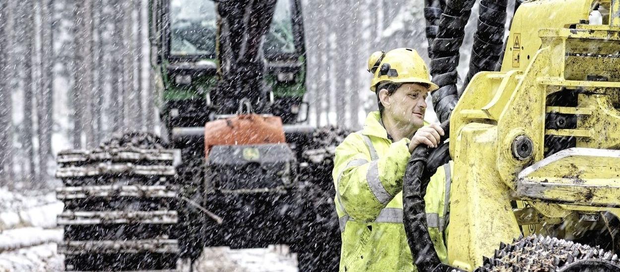 40 Prozent Zuschuss für Waldbesitzer: Mittel bereits ausgeschöpft