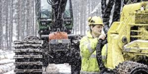 40 Prozent Zuschuss für Waldbesitzer - Ecovis Unternehmensberater